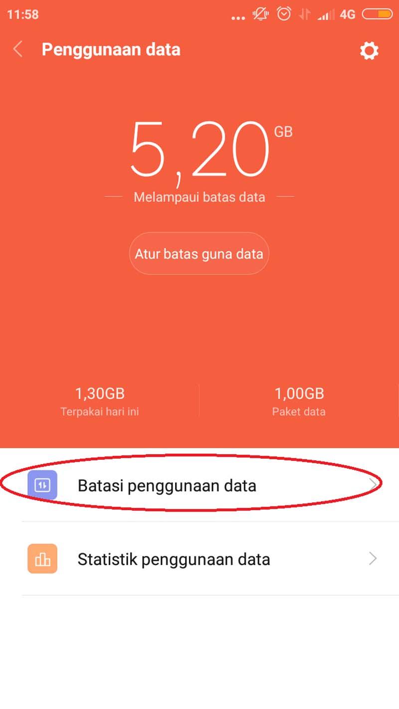 Hapus Iklan MIUI Batasi Penggunaan Data